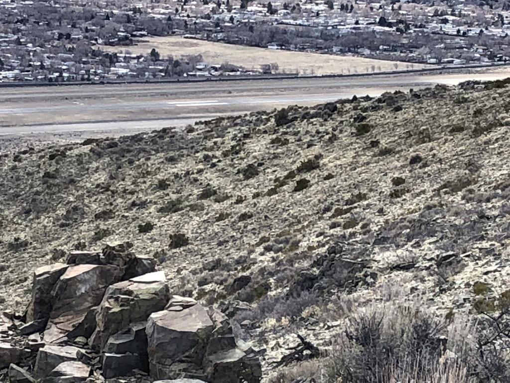 Reno Carson Trail Report Please-0736234e-4954-43f7-96c7-f3a426984ede.jpg