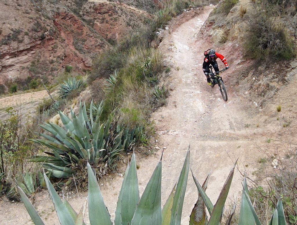 Biking in Peru-08-mara-lowerdsc06467.jpg