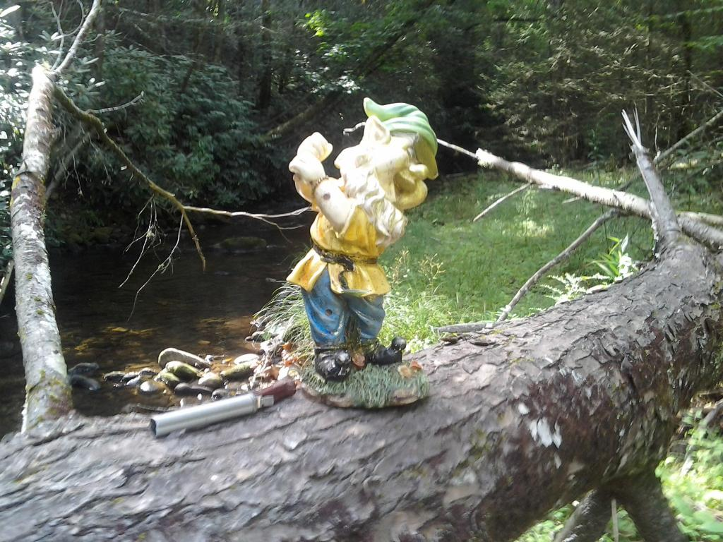 Adventures with the Pisgah Gnome-0805122101-1-.jpg
