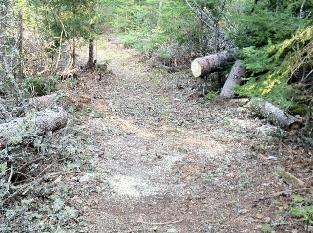 Safety margin on sides of trail-08b.jpg