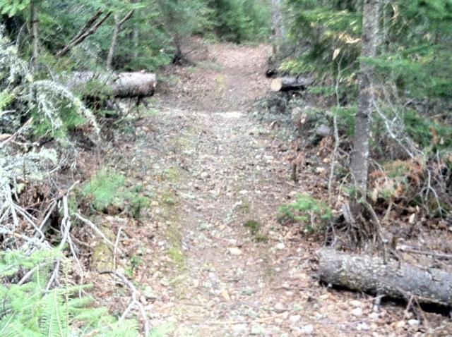 Safety margin on sides of trail-09b.jpg