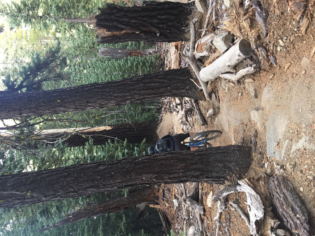 Nov 2-4, 2018 Weekend Ride and Trail Conditions Report-0d3ce1b6-d968-444c-8875-c9509ef1d1c3.jpg