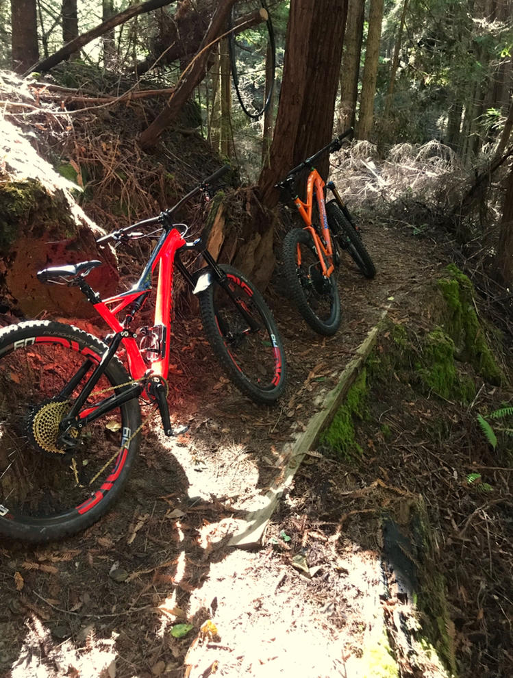 did you ride today?-0ea358a9-3162-437f-812c-4a8681cd6936.jpg