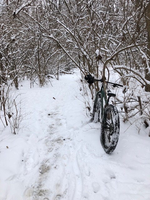 Snow and ice riding picture thread.-1-13-19-4.jpg