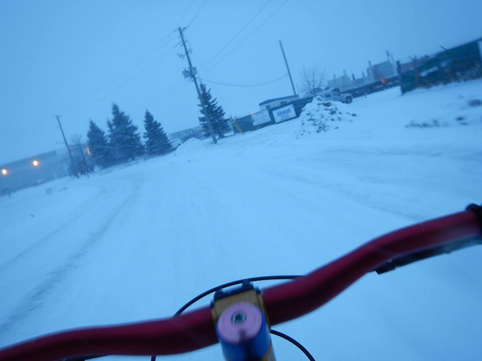 did you ride today?-1.jpg
