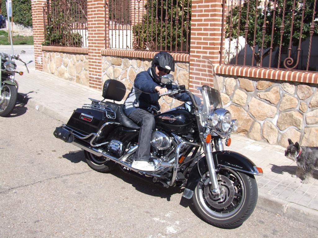 ein? Bike 29er-1.jpg