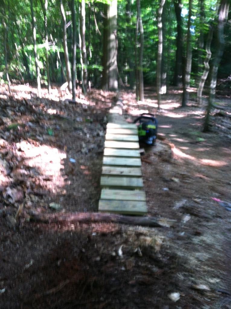 Chainsaw 101: proper way to plane a log-1-mile-log-w-ramp.jpg