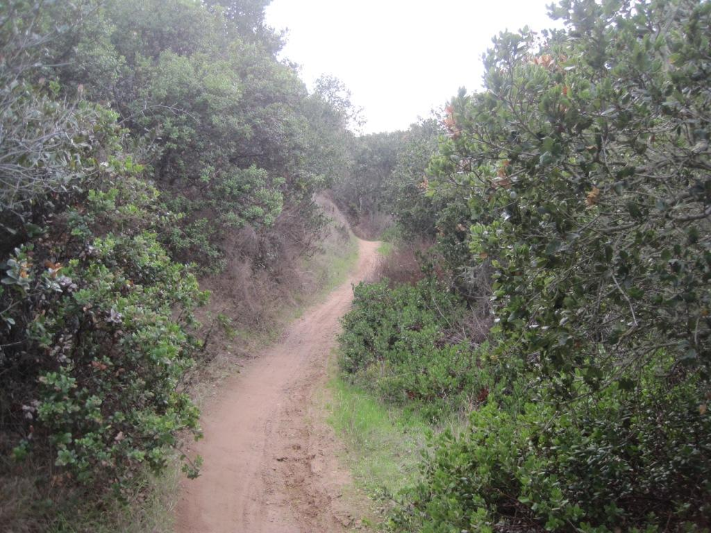 """Live from the trail"" photo thread-10-27-2011-074.jpg"