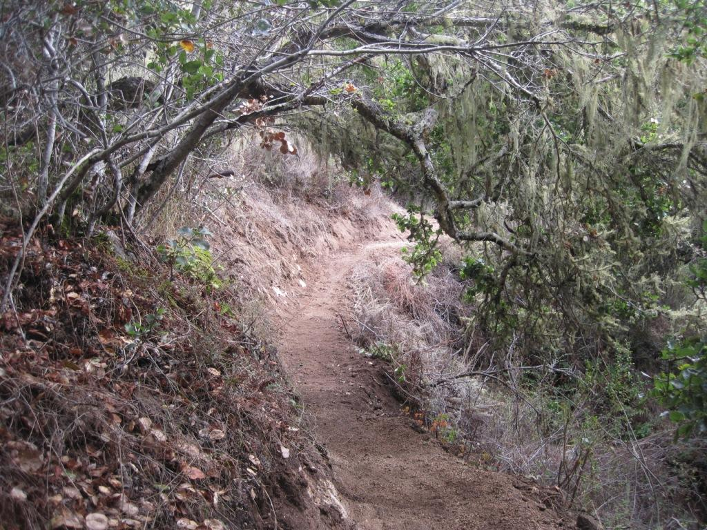 """Live from the trail"" photo thread-10-27-2011-098.jpg"