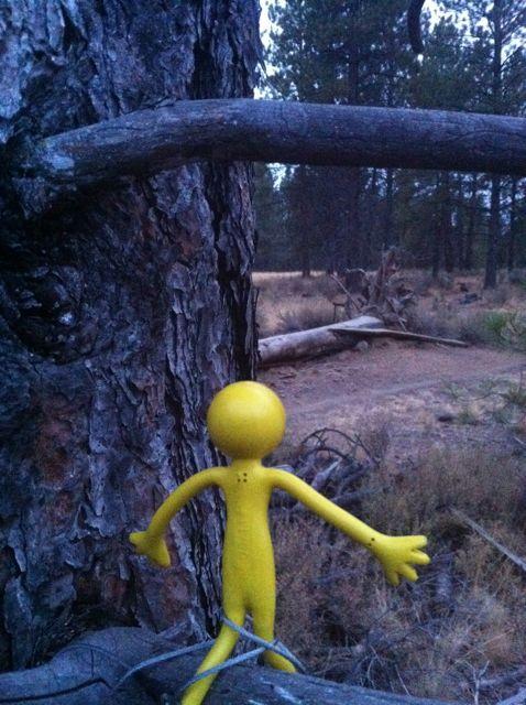Yellowman game-10.jpg