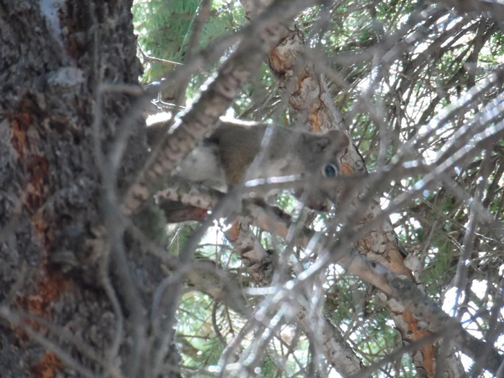 AZ Photo Friday - Sept. 14th-10.jpg