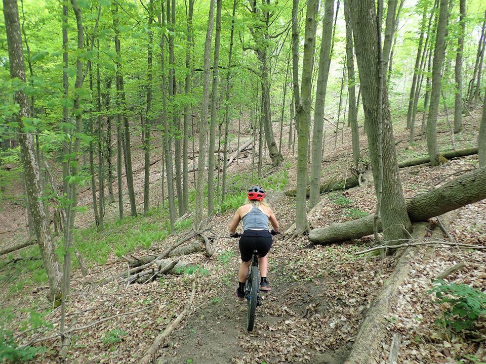 Local Trail Rides-100050519_2702580933319674_7028605441785462784_o.jpg