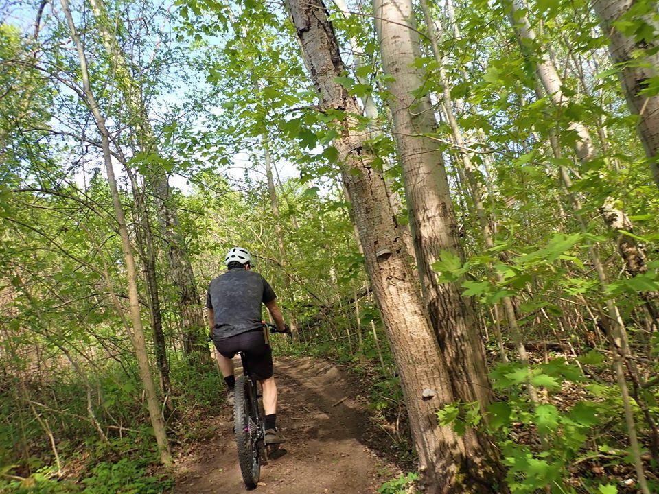 Local Trail Rides-100085199_2701749870069447_4835306222292828160_o.jpg