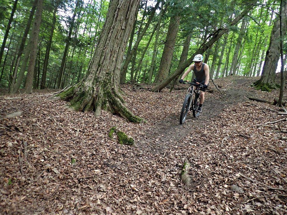 Local Trail Rides-100086182_2702579703319797_9191236245437546496_o.jpg