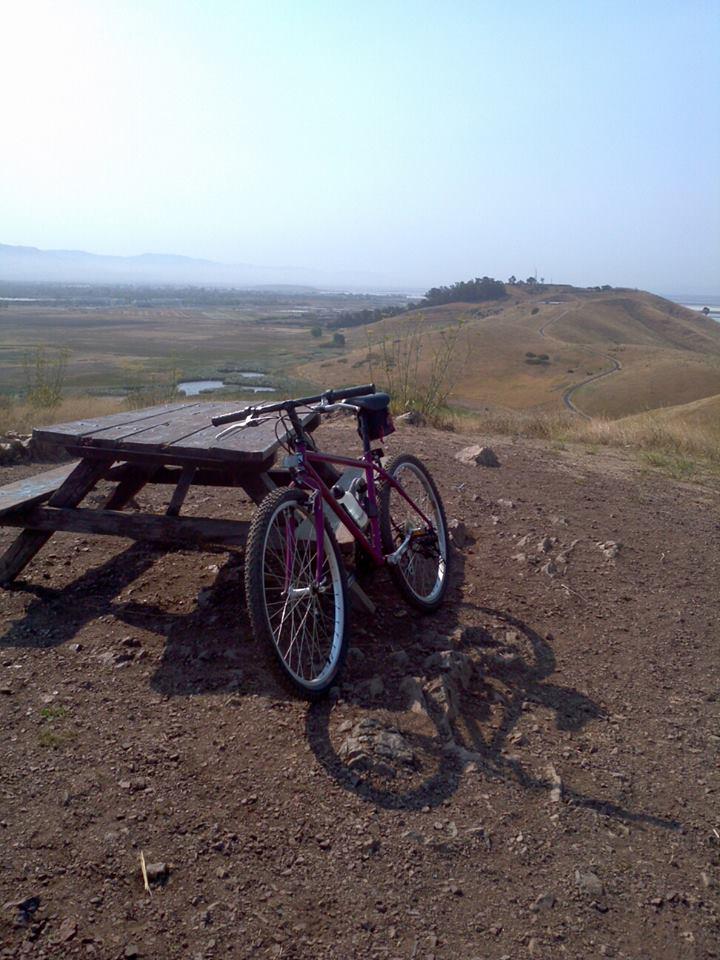 Mountain Biking on a rigid frame, Need tips!-1001132_10201633752469897_692504302_n.jpg