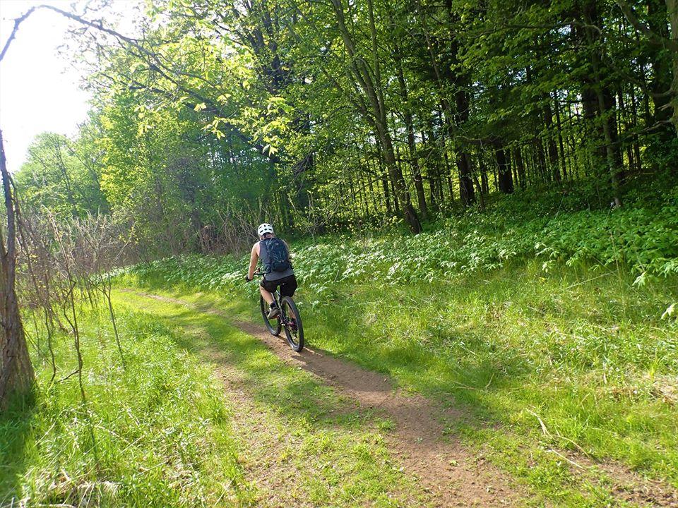 Local Trail Rides-100374160_2703488073228960_3822024236306792448_o.jpg