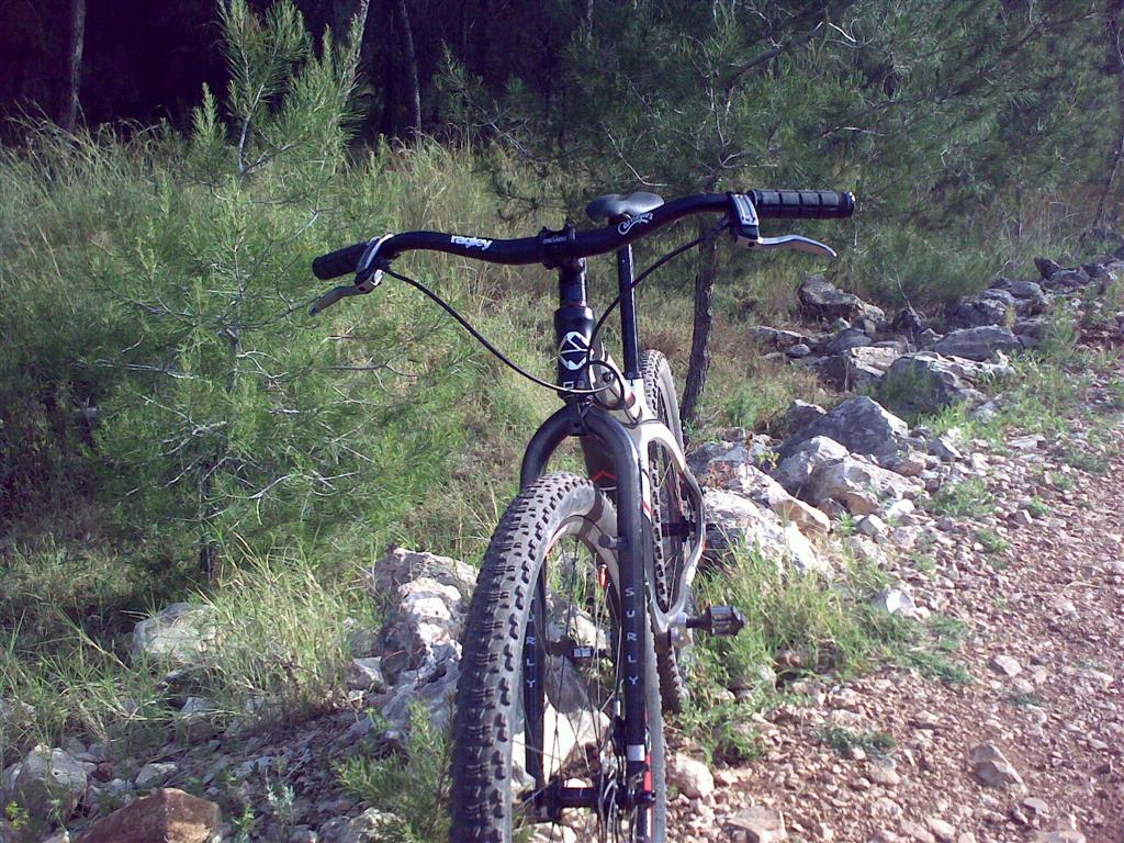 Alt Bars and Technical riding?-10042010045-large-.jpg