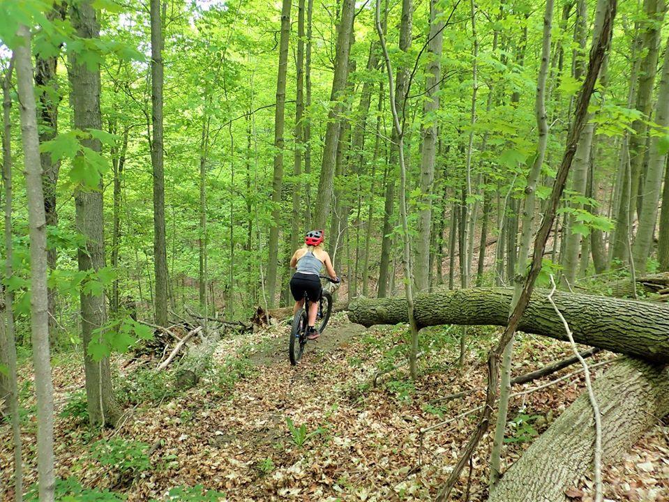 Local Trail Rides-100478285_2702583699986064_6737098254695006208_o.jpg