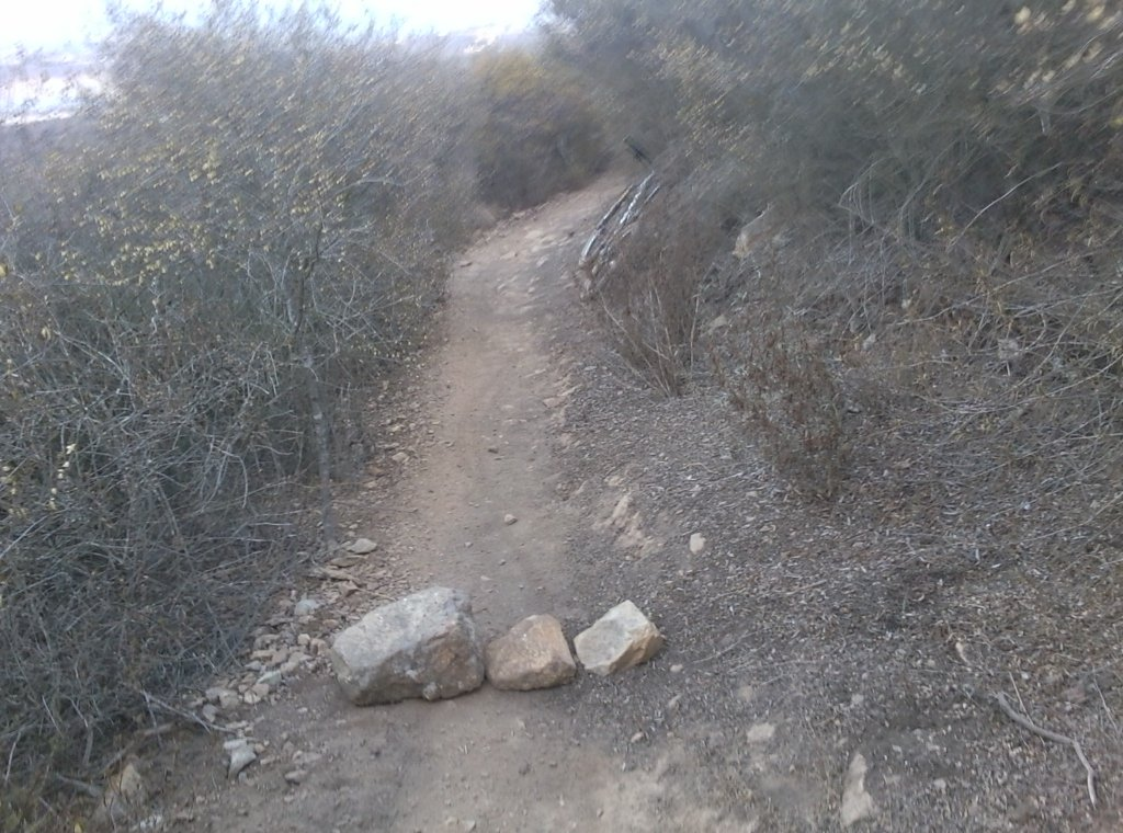 Double Peak Trail Sabotage-1008131808.jpg