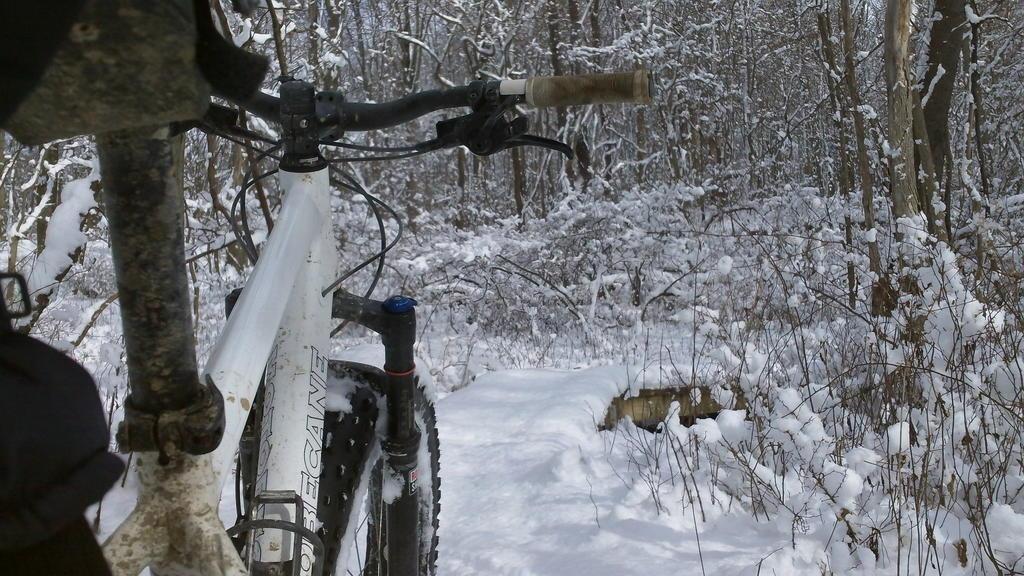 bike +  bridge pics-100_0074.jpg