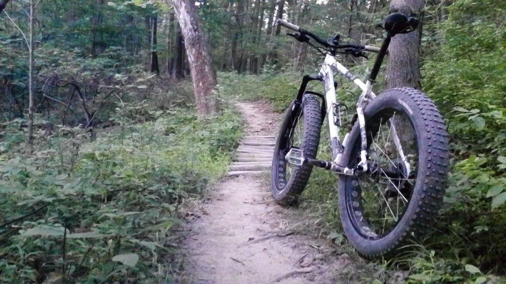 Daily fatbike pic thread-100_0081.jpg