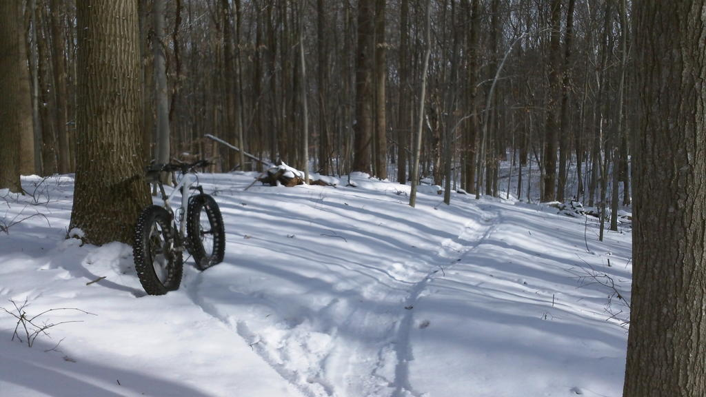 did you ride today?-100_0088.jpg
