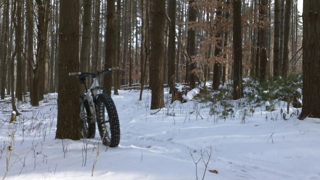 did you ride today?-100_0090.jpg
