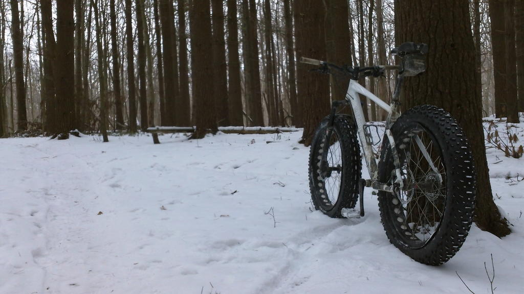 did you ride today?-100_0092.jpg