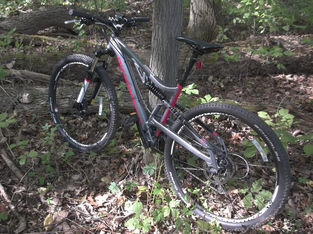 Post Pictures of your 29er-100_0171a.jpg