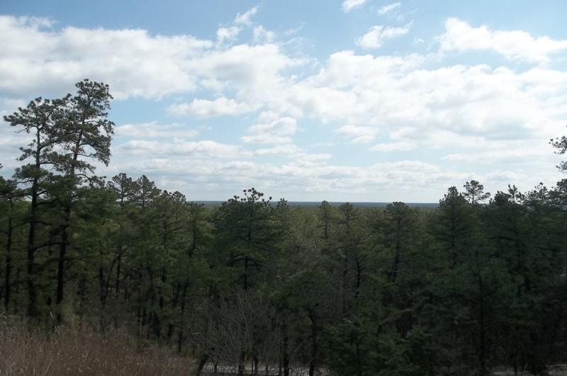 Pinelands of New Jersey ride-100_0527.jpg