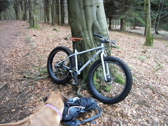 Daily fatbike pic thread-100_0731-640x480-.jpg
