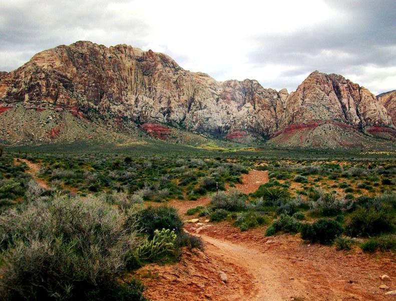 Las Vegas Cowboy Trails: Flat, Wide, Boring......-100_1266.jpg