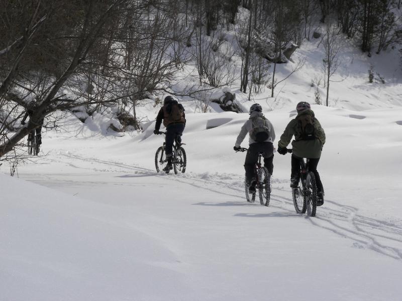 Local Trail Rides-100_1303.jpg