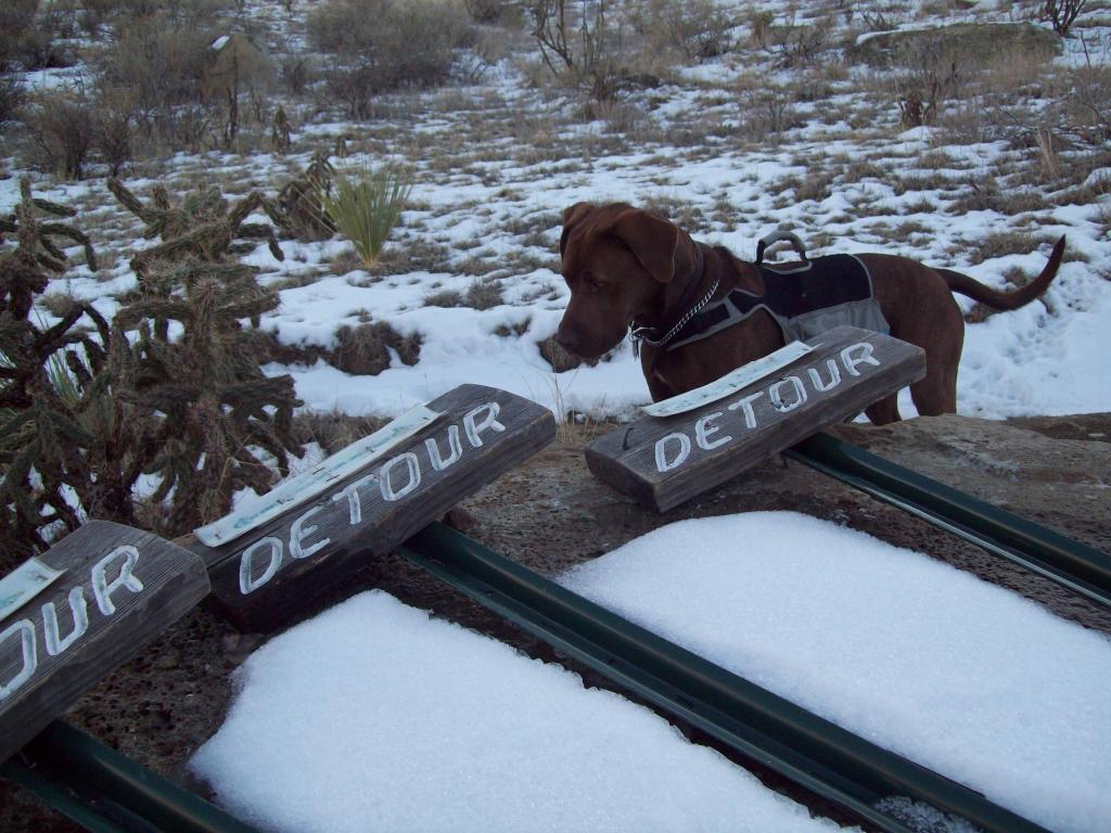 Pueblo Trail Conditions-100_1655.jpg