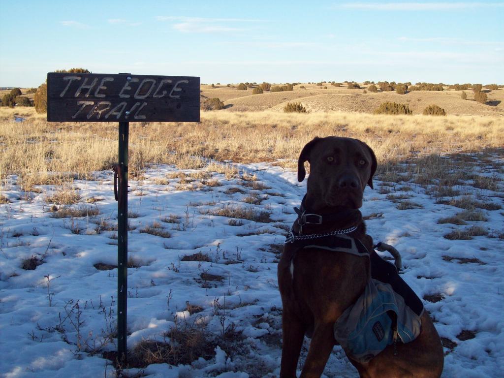 Pueblo Trail Conditions-100_1666.jpg