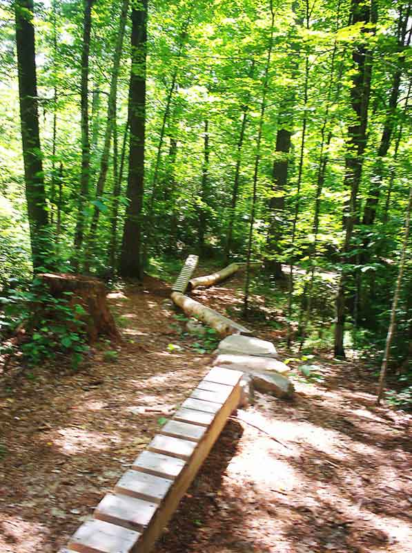 Wisconsin Trail Photos-100_1989.jpg