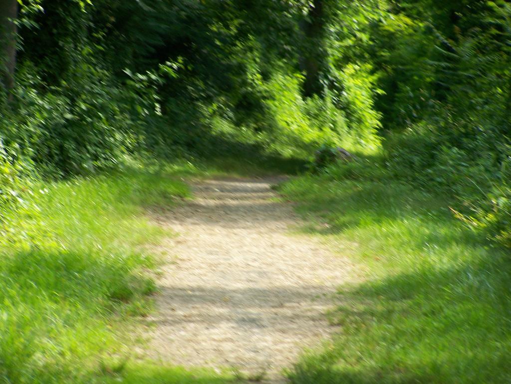Fat Biking and health-100_2287.jpg
