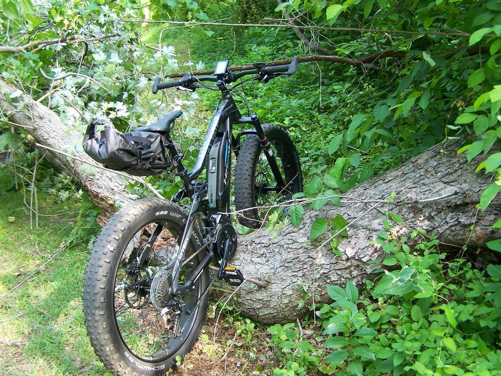 Fat Biking and health-100_2306.jpg