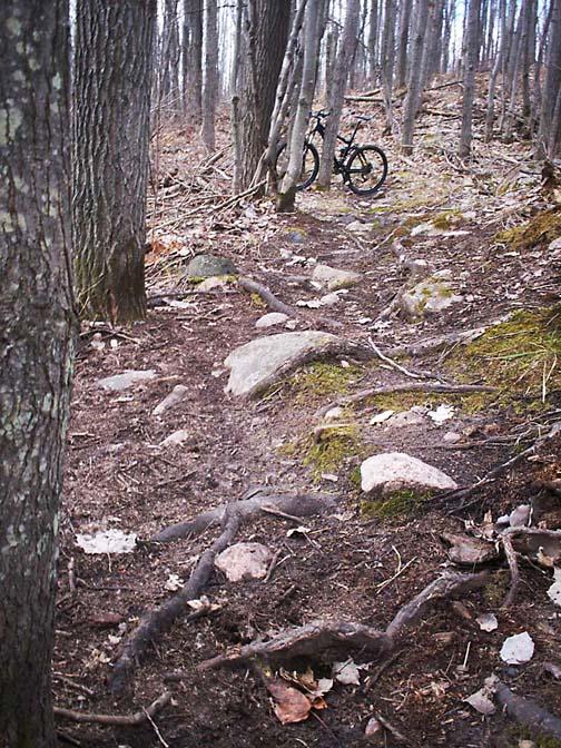 Spring has Sprung! - ride photos-100_2434.jpg