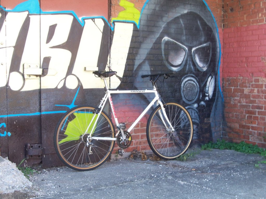 my  VRC-ish city bike-100_2610.jpg
