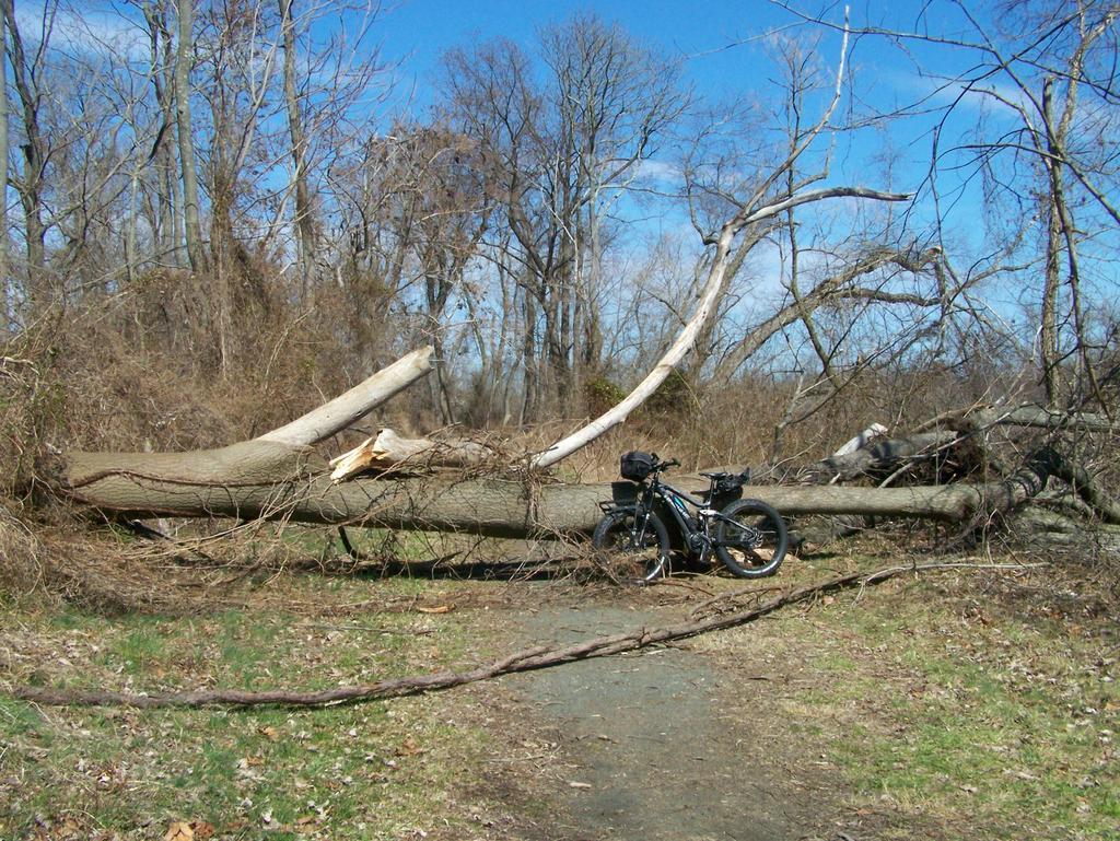 Fat Biking and health-100_3014.jpg
