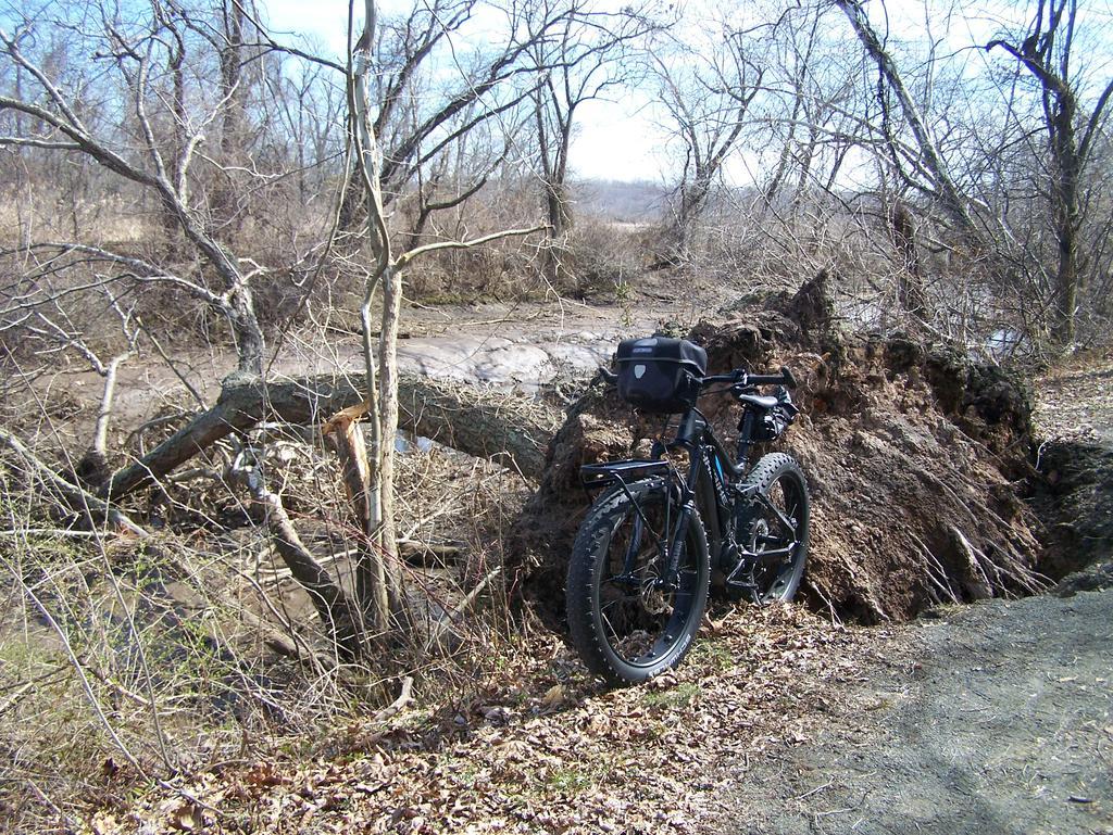 Fat Biking and health-100_3018.jpg