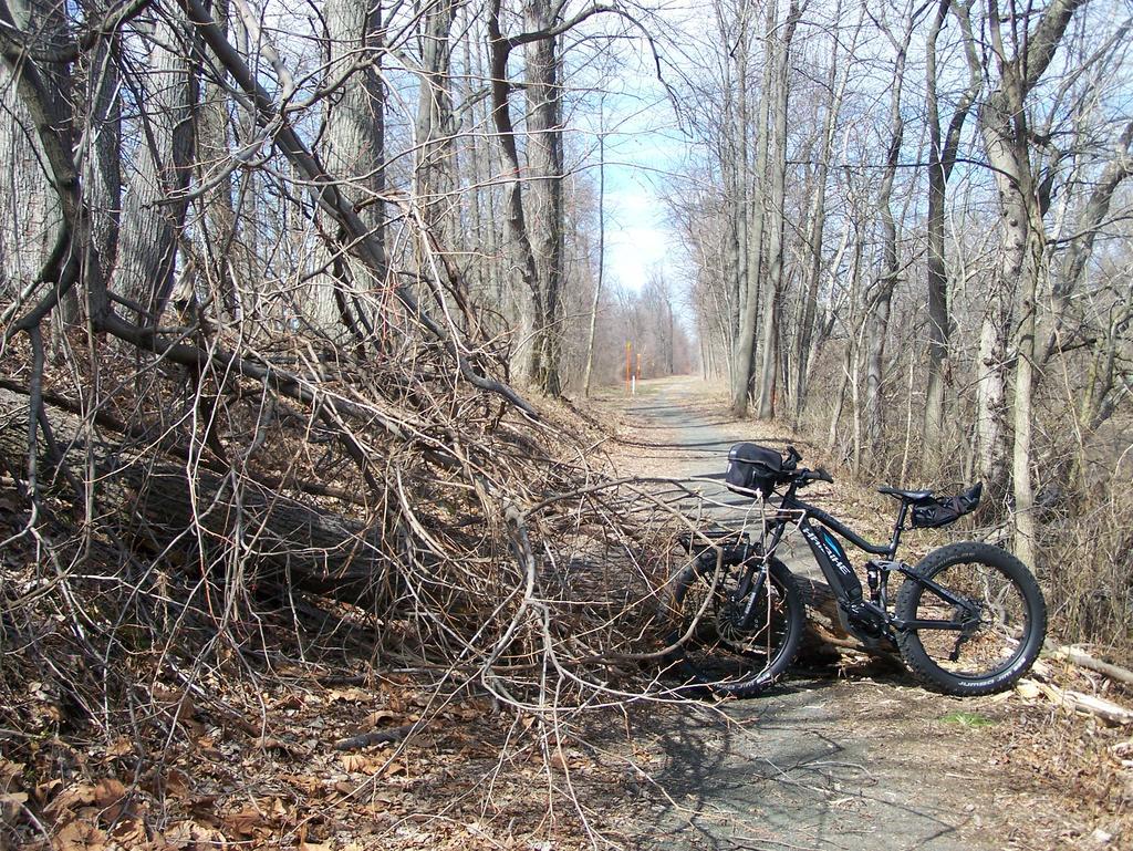Fat Biking and health-100_3020.jpg