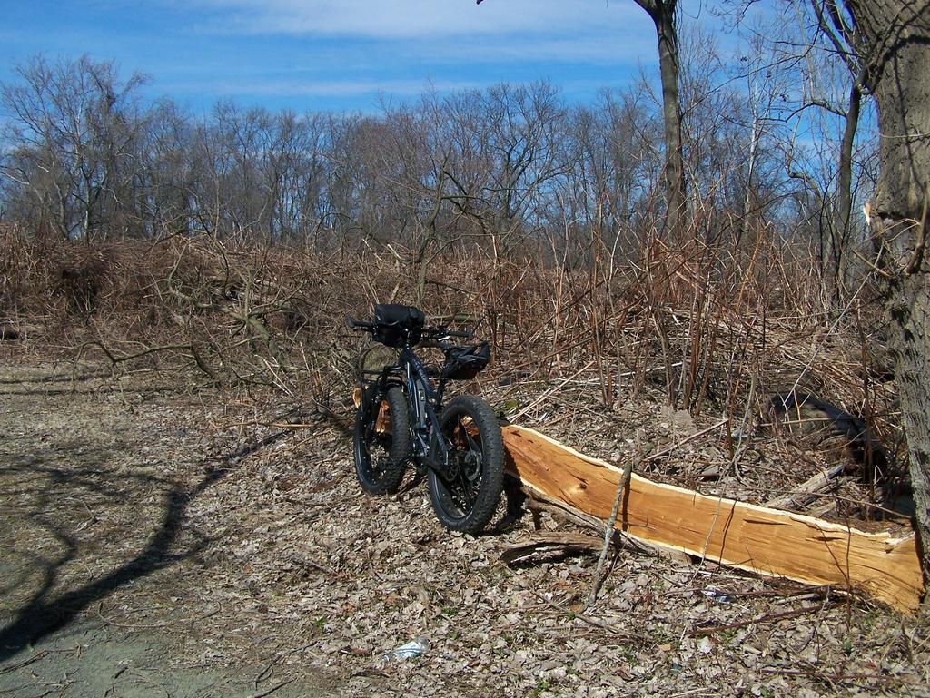 Fat Biking and health-100_3029.jpg