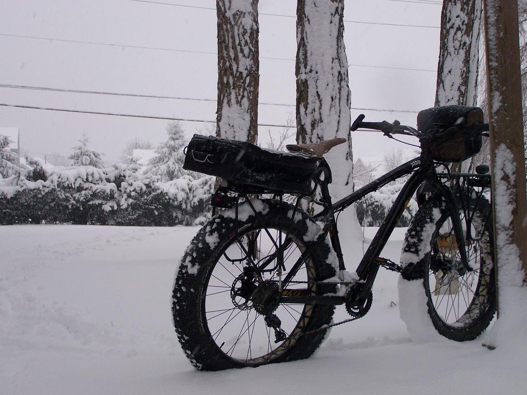 Fat Biking and health-100_3043.jpg