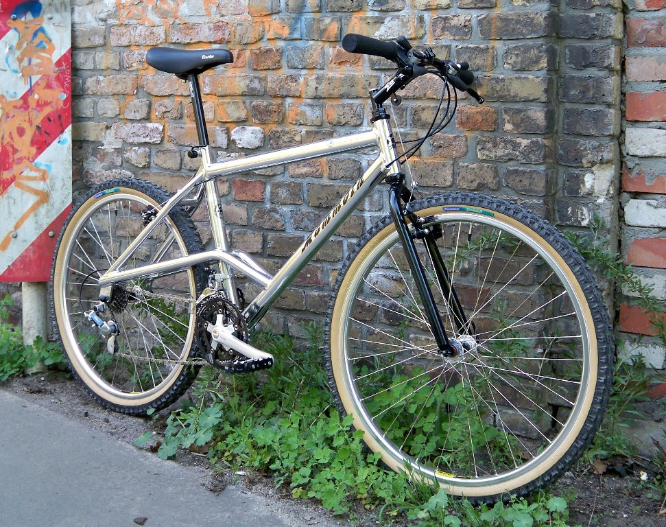 Info Needed Please: Mammoth RC201 RC202 Tracker Mountain Bike?-100_3083__971x768.jpg