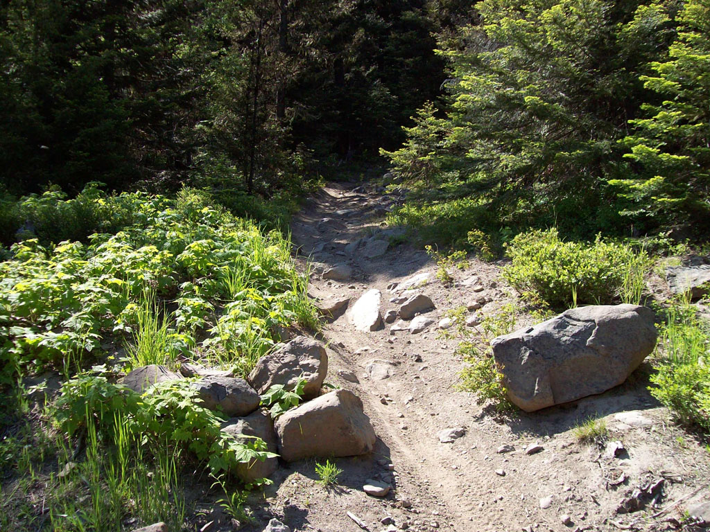 Rocky trail suggestions?-100_3199s.jpg