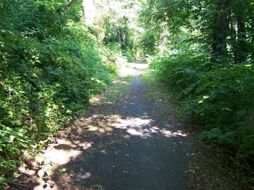 Fat Biking and health-100_3243.jpg