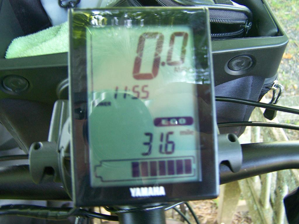 Fat Biking and health-100_3281.jpg