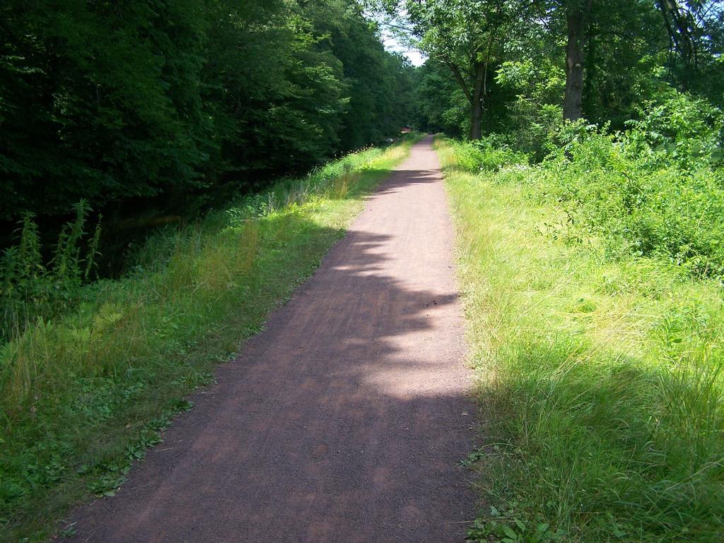 Fat Biking and health-100_3303.jpg